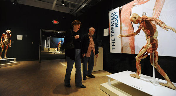 Ruth Lampenfeld along with her husband Max Lampenfeld of Cherryville, Lehigh Township, strolls through the Bodies Revealed exhibit at the Da Vinci Science Center in Allentown Tuesday afternoon.