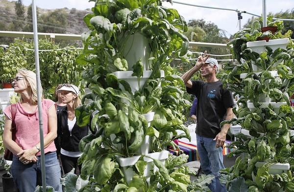 Erik Cutter, the managing director of Alegria Fresh, a hydroponic vertical farm in Laguna Beach, talks to members of the Nellie Gail Gardeners on Tuesday at the farm.
