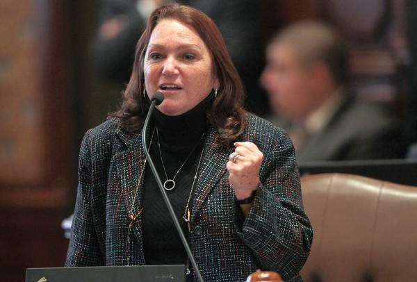 State Sen. Suzi Schmidt, R-Lake Villa, has said she won't seek re-election.