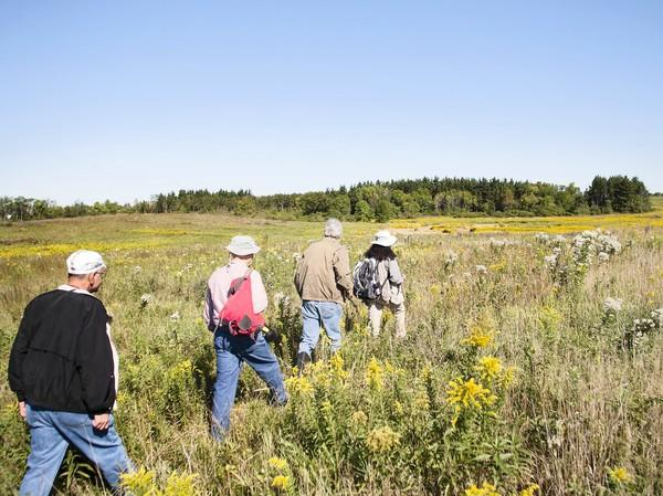 The Orland Grassland preserve area in the southwest suburbs will grow by more than 1,000 acres with the purchase of new land.