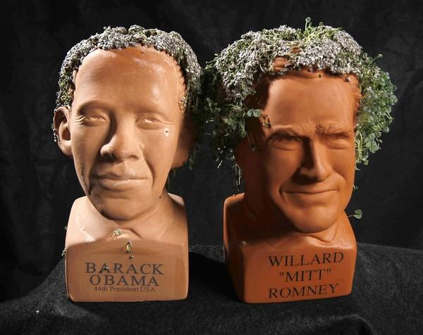 In the campaign between Chia Head presidential candidates, Chia Romney sprouted a lead against Chia Obama. But then both became discolored and droopy, so the race began anew.