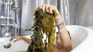 After her warm bath, Claudia Stubin said she was relaxed and her skin felt healthier. But seaweed, not bubbles, was responsible.