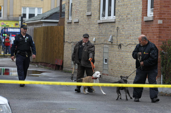 An animal control officer and a family member remove dogs from a home as Chicago police investigate the scene where Nawal Aysheh, 20, was fatally shot today.