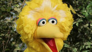 "<span style=""font-size: small;"">Big Bird is leaving Sesame Street and heading for Washington, D.C. </span>"