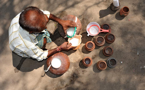 An Indian man prepares palm wine or toddy, also called 'kallu,' which is an alcoholic beverage created from the sap of various species of palm tree on the outskirts of Hyderabad.
