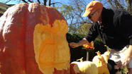 PHOTOS: Wheaton Resident Turns 800 Pound Pumpkin Into A Work Of Art