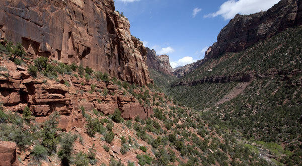 """There are lots of places to build large homes with great views, but national parks like Zion aren't one of them,"" said Will Rogers, president of the Trust for Public Land, according to a news report."