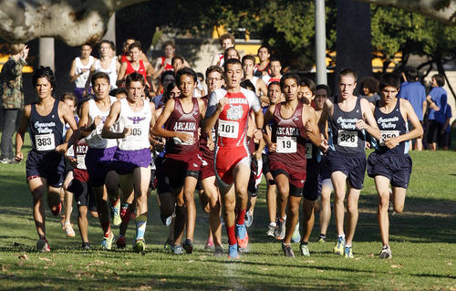 Runners on the first lap at the Pacific League cross country meet at County Park in Arcadia on Monday, October 16, 2012.