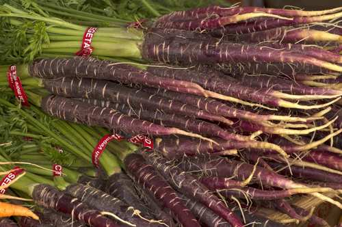 Indigo purple carrots grown by Weiser Family Farms in Tehachapi.