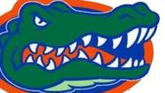 Swamp Things: Our UF blog