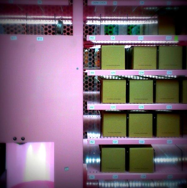 The Sprinkles cupcake ATM in Beverly Hills.