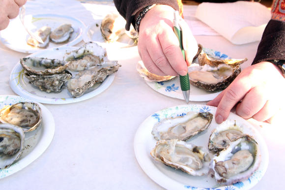Oyster tasting returns Nov. 10 to Gloucester