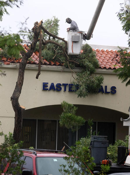 A worker clears up a fallen trees from in front of Easter Seals at the Sawgrass Plaza from an overnight tornado that touched down in Sunrise and Plantation on October 18, 2011.