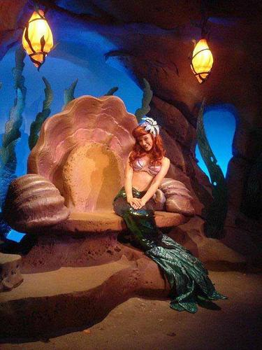 Ariel's room in Ariel's Grotto, a new meet and greet feature in The Little Mermaid section of the new Fantasyland at Walt Disney World's Magic Kingdom.