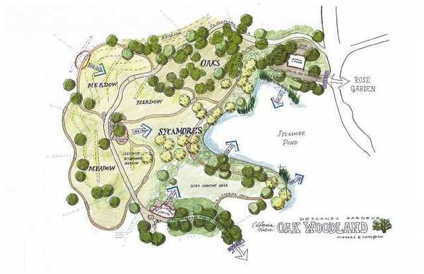 A rough plan of the proposed Oak Woodland project at Descanso Gardens.