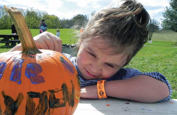 Rylie Keckler, 7, of Waynesboro, Pa., puts the finishing touches on her pumpkin Saturday at the 19th annual Pumpkin Festival at Renfrew Park in Waynesboro.
