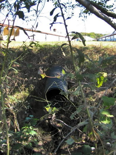 Pipe draining from between poultry houses into ditch