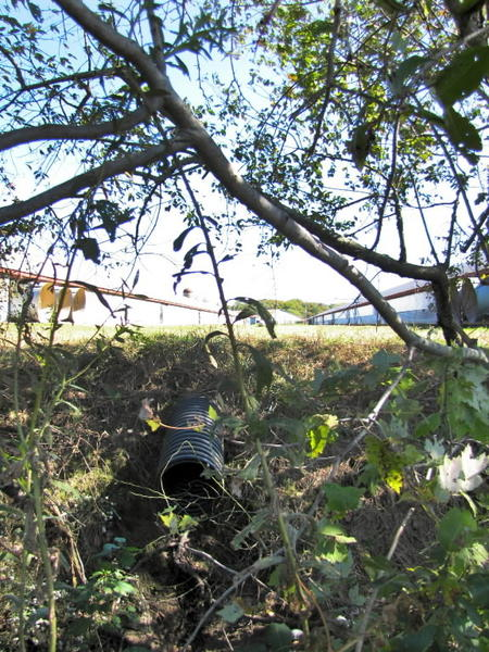 Photo submitted by Waterkeeper Alliance in federal lawsuit shows pipe into ditch from between Hudson farms' poultry houses.