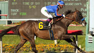 Eight former champions entered in Breeders' Cup