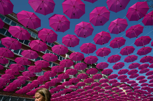 A woman walks under a canopy of 400 pink umbrellas, part of a campaign to raise awareness and promote prevention and treatment of breast cancer, in the center of Sofia on October 23, 2012.