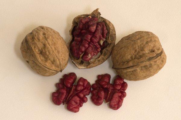 farmers markets  the vivid red robert livermore walnut