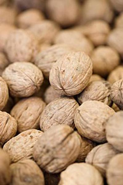 Get fresh walnuts now, while the meat is sweet and slightly creamy.
