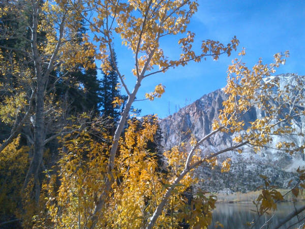This photo of Lundy Canyon, taken Friday morning, shows off autumnal changes.