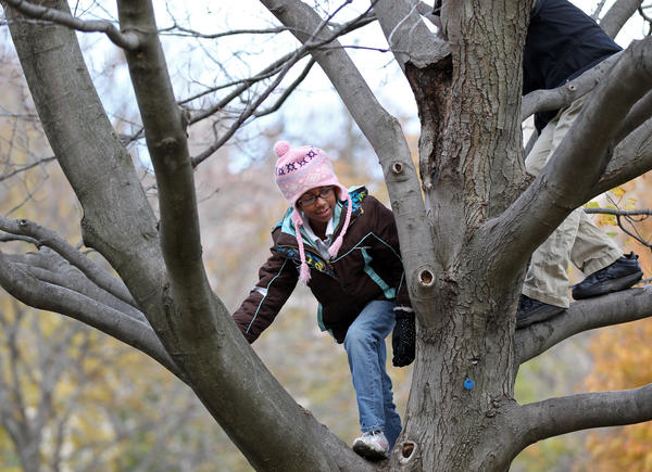 Rachel Sandoboe, 8, center, climbs a tree with her older sister Gwendolyn on the University of Chicago quad as temperatures reach into the 40s in Chicago on Saturday.