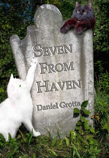 'Seven from Haven' is a new book of mysterious tales written by Daniel Grotta of Newfoundland, Wayne County.