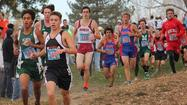Two runners win third cross country crowns; Tribune sweeps titles