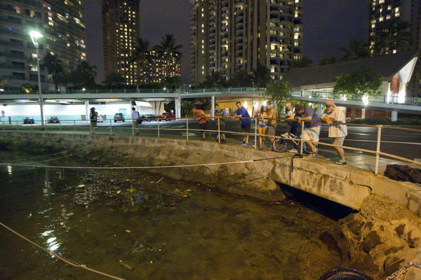 Onlookers in Oahu watch ocean water surge into Ala Wai Harbor.
