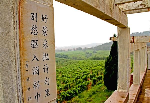 "Chinese wine: The Huadong Parry Winery sits on China's east coast in the ""Nava Valley."""