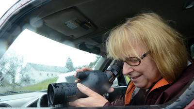 Marsha Forys of Mount Pleasant was at Lake Somerset on Monday watching waterfowl from her car using a telescopic bird scope.