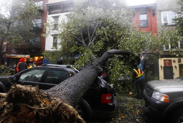 Photos: Hurricane Sandy: A workman cuts a tree in pieces after it fell on top of a car in Hoboken, New Jersey. Hurricane Sandy, one of the biggest storms ever to hit the United States, battered the densely populated East Coast, shutting down transportation, forcing evacuations in flood-prone areas and interrupting the presidential election campaign.