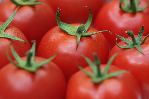 Scientists uncovered one genetic trait that influences tomato flavor.