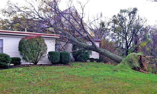 A tree uprooted Monday night as the remnants of Hurricane Sandy moved through Franklin County, Pa., crashed into the Kelso-Cornelius Funeral Home in St. Thomas.