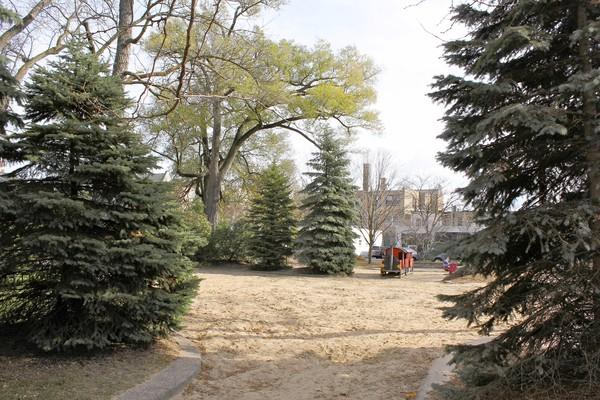A sandy clearing is all that's left after village workers removed a large piece of wooden playground equipment from Friends Park near downtown Glencoe. In mid-October, park board president Max Retsky's 13-year-old son was slightly injured after he fell through a rotten wooden step in the apparatus.