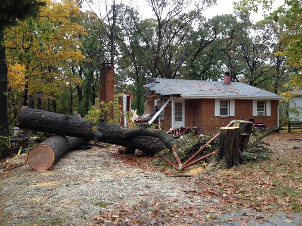 A Pasadena man was killed Monday evening when a tree crashed into his home, Anne Arundel County fire officials said.