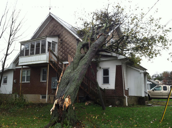 Tree on a home at the corner of Broad and Liberty in Easton Tuesday morning.