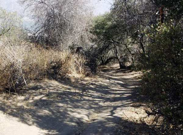 This La Canada Flintridge loop trail in Cherry Canyon leads to the Ultimate Destination, a lookout where the city will add a water fountain and other amenities in 2013.