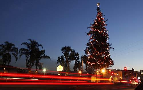 Atwater Village holiday tree