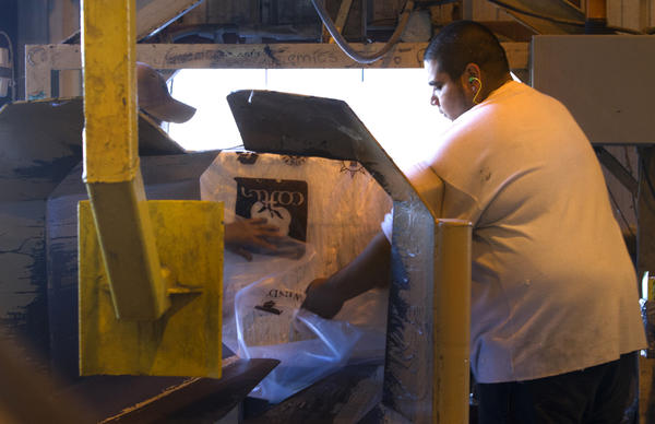 Frank Martinez seals up the packaging on a bale off cotton out of the bale press after processing at Commonwealth Gin in Windsor. The cotton has been cleaned and the seed removed during the ginning process. Each bale can weight as much as 460-520 lbs. 480 lbs. is the avg. A sample is taken from each side of the bale and combined for shipment to the USDA classing office in Florence, South Carolina.