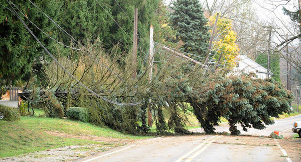 A large tree was blown down Monday along Pennsylvania Avenue at Shimerville Road in Emmaus. Here it is Wednesday.
