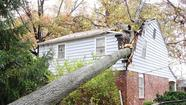Bel Air, rest of Harford clean up from Sandy Wednesday