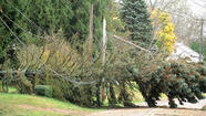 The Lehigh Valley's recovery from superstorm Sandy seemed to be proceeding slowly but surely on Wednesday, with streets coming to life and the area's electric utilities saying most power would be restored by the end of the weekend.