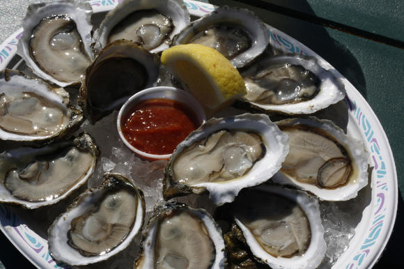 Oyster roast coming up Nov. 17 at Virginia Living Museum