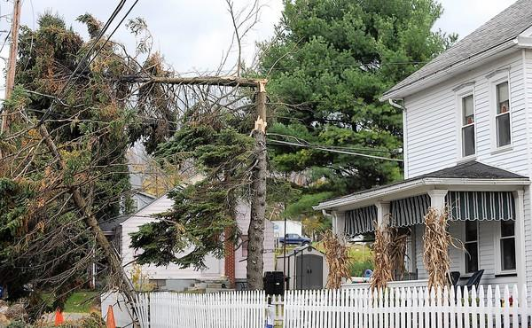 A large pine tree fell onto wires and caught on fire on Main Street in Chapman, causing the second power outage in three days in tiny borough.