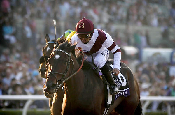 Royal Delta, with Mike Smith aboard, holds off the field to win the Breeders' Cup Ladies Classic on Friday at Santa Anita Park.