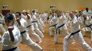 GALLERY: International Martial Arts Camp