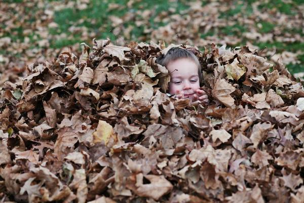 Big piles of leaves -- and the chance to play in them -- are another thing to feel grateful for.